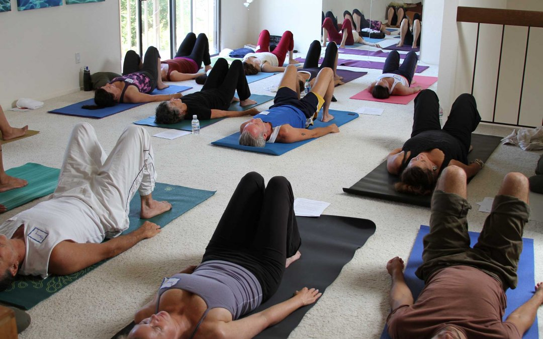 Gentle Somatic Yoga (3hr) Workshop